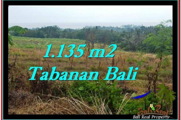 Affordable 1,135 m2 LAND IN TABANAN BALI FOR SALE TJTB253