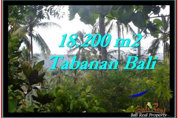 Exotic TABANAN BALI 18,200 m2 LAND FOR SALE TJTB254