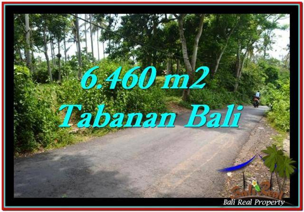 FOR SALE Exotic LAND IN Tabanan Selemadeg BALI TJTB256