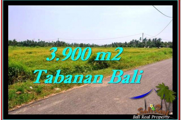 Affordable PROPERTY LAND IN TABANAN FOR SALE TJTB258