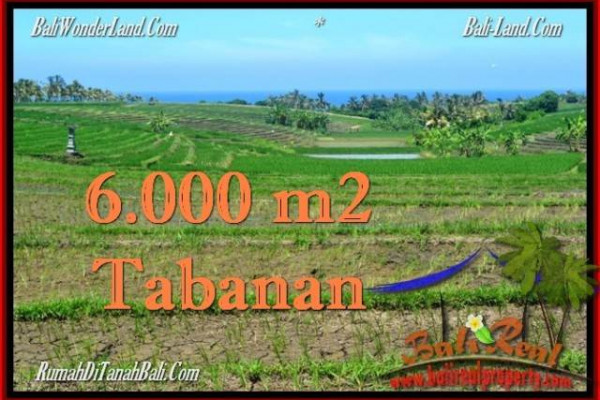 FOR SALE Exotic LAND IN Tabanan Selemadeg BALI TJTB268