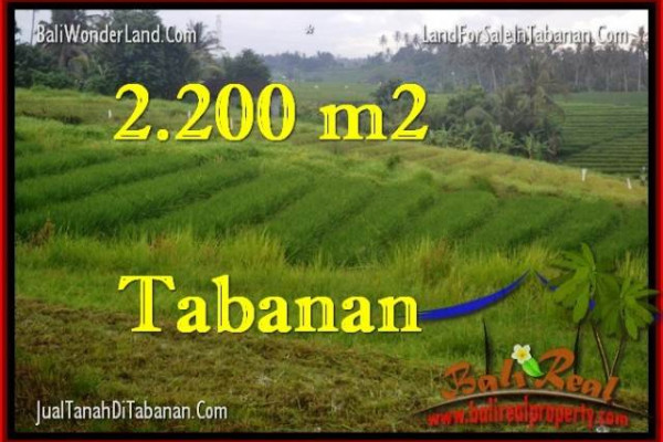 FOR SALE Exotic LAND IN Tabanan Selemadeg BALI TJTB269