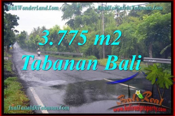 Magnificent TABANAN BALI 3,775 m2 LAND FOR SALE TJTB271