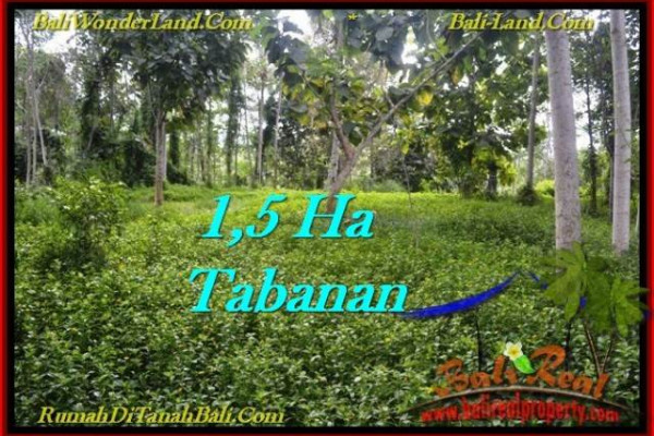 FOR SALE Affordable PROPERTY 15,550 m2 LAND IN TABANAN BALI TJTB272