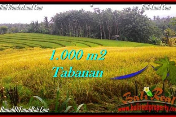 Exotic PROPERTY 1,000 m2 LAND FOR SALE IN Tabanan Selemadeg TJTB273