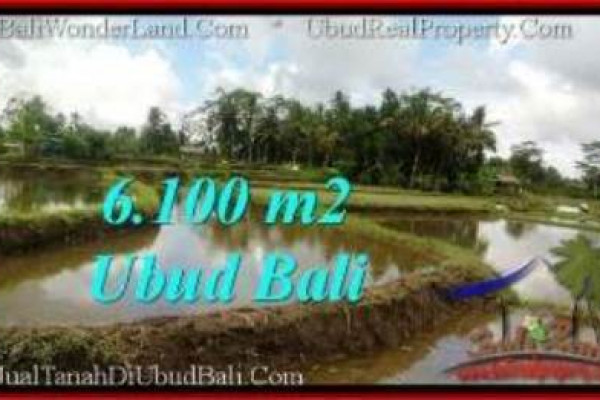 Exotic PROPERTY LAND IN UBUD BALI FOR SALE TJUB547