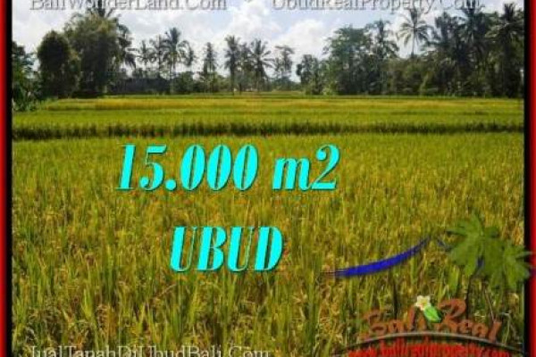 Affordable PROPERTY LAND SALE IN UBUD TJUB551