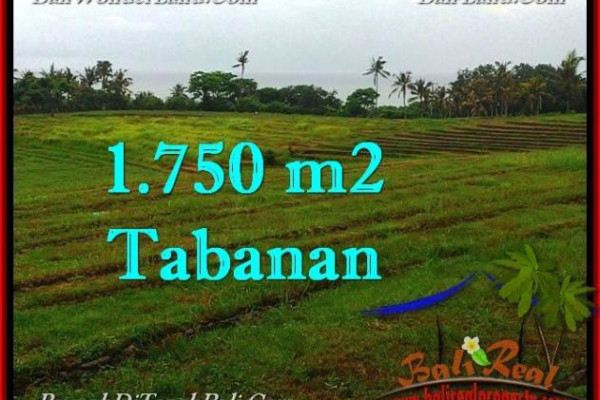 Beautiful 1,750 m2 LAND SALE IN TABANAN BALI TJTB262
