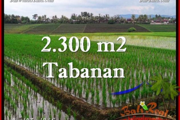 FOR SALE Affordable PROPERTY 2,400 m2 LAND IN TABANAN BALI TJTB263