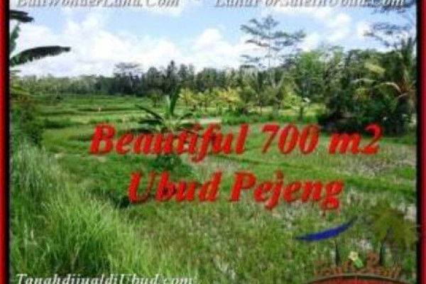 Beautiful PROPERTY 700 m2 LAND SALE IN Ubud Pejeng TJUB534