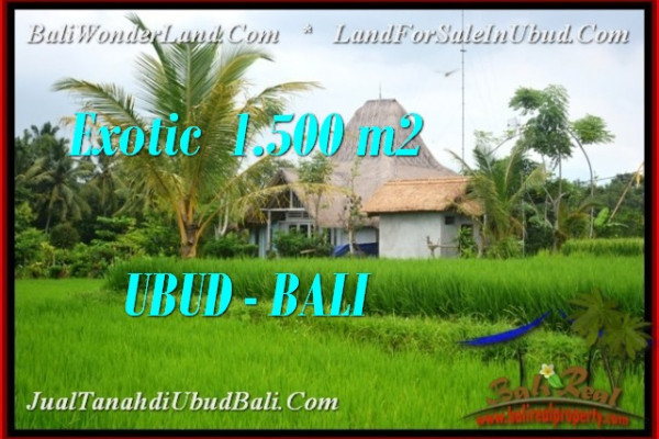 FOR SALE Affordable PROPERTY 1,500 m2 LAND IN Ubud Pejeng TJUB541