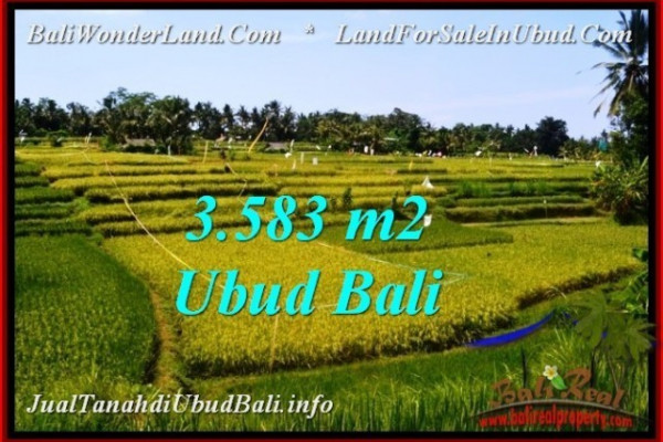 Exotic PROPERTY LAND FOR SALE IN UBUD BALI TJUB542