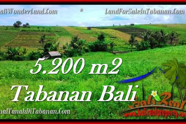 FOR SALE Magnificent LAND IN Tabanan Selemadeg BALI TJTB281