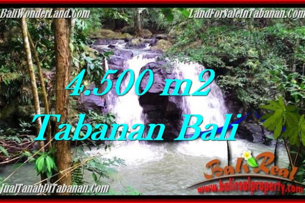 Magnificent TABANAN BALI 4,500 m2 LAND FOR SALE TJTB283