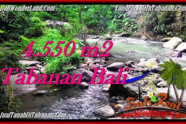 Beautiful PROPERTY 4,550 m2 LAND FOR SALE IN Tabanan Penebel TJTB284