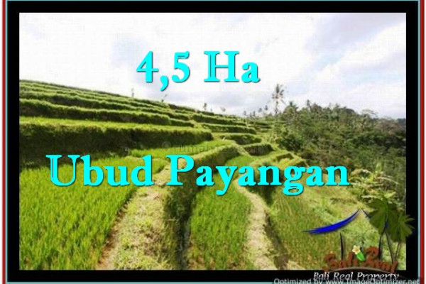 Exotic UBUD BALI 45,000 m2 LAND FOR SALE TJUB533