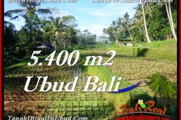 Beautiful PROPERTY 5,400 m2 LAND SALE IN Ubud Payangan TJUB554