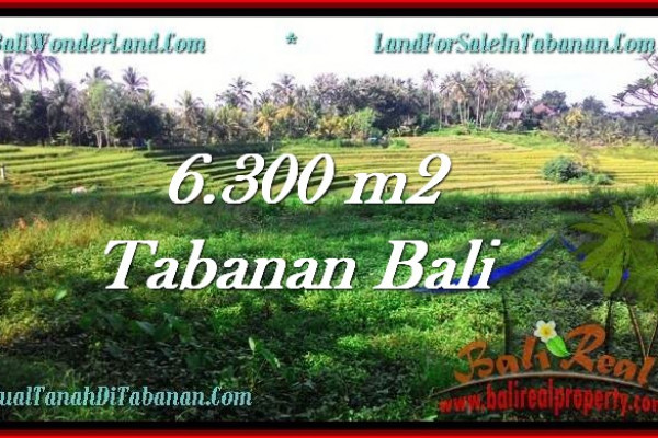 Affordable PROPERTY LAND IN TABANAN FOR SALE TJTB275