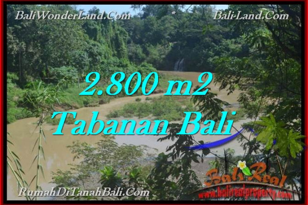 Beautiful PROPERTY 2,800 m2 LAND FOR SALE IN Tabanan Selemadeg TJTB276