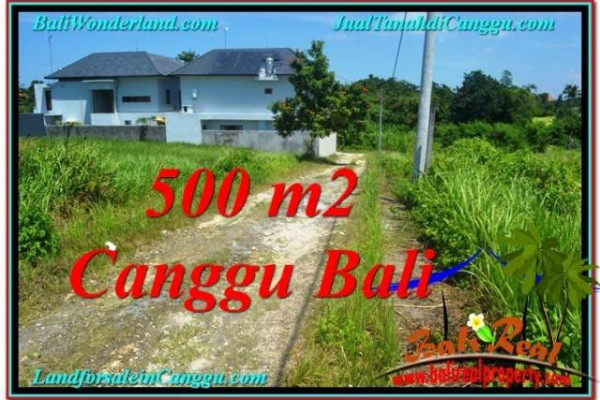 Beautiful 500 m2 LAND FOR SALE IN Canggu Brawa BALI TJCG201
