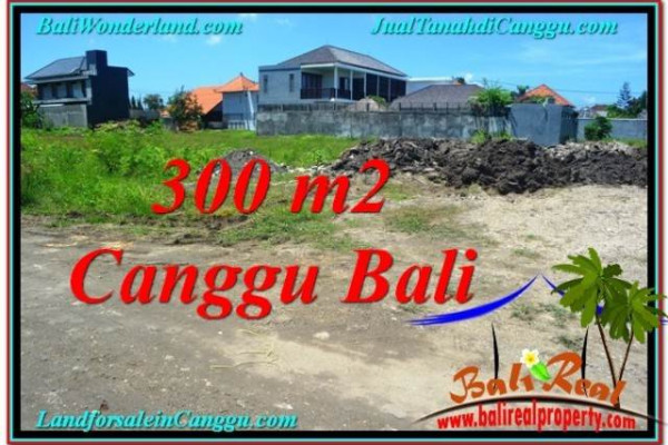 FOR SALE Affordable 300 m2 LAND IN Canggu Brawa TJCG203