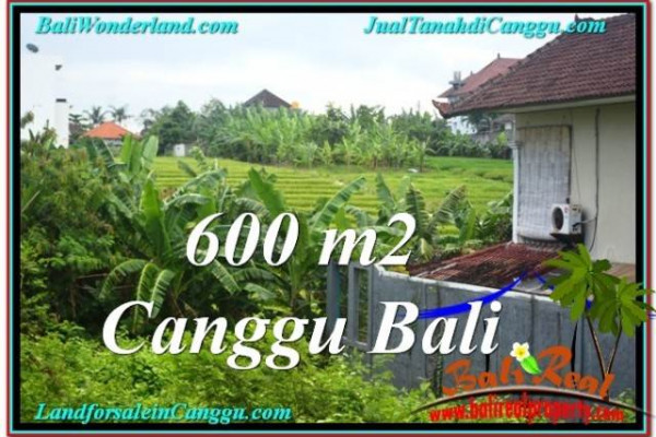 Beautiful 600 m2 LAND SALE IN CANGGU TJCG206