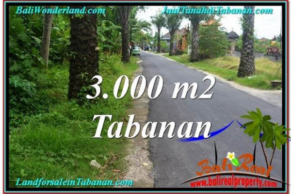 Beautiful PROPERTY TABANAN LAND FOR SALE TJTB297