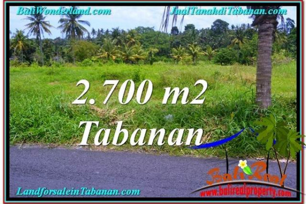 Affordable LAND IN Tabanan Kerambitan BALI FOR SALE TJTB301