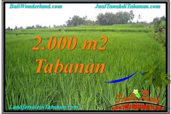 Exotic LAND SALE IN Tabanan Penebel BALI TJTB303