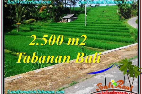 Exotic PROPERTY LAND FOR SALE IN TABANAN TJTB305