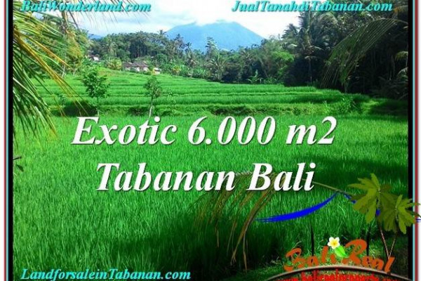 Beautiful LAND FOR SALE IN Tabanan Penebel TJTB306