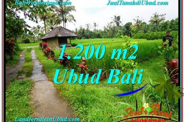 Magnificent PROPERTY Ubud Payangan 1,200 m2 LAND FOR SALE TJUB559