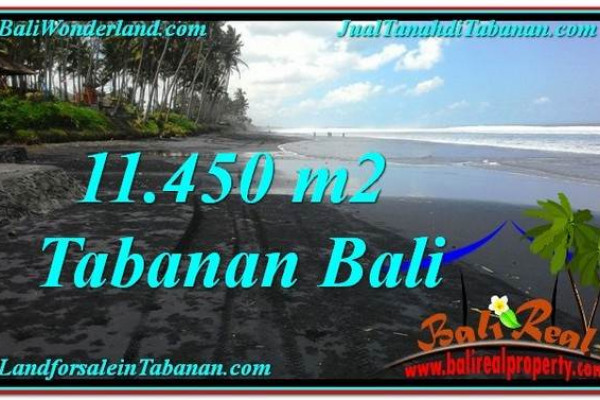 LAND IN Tabanan Kerambitan BALI FOR SALE TJTB291