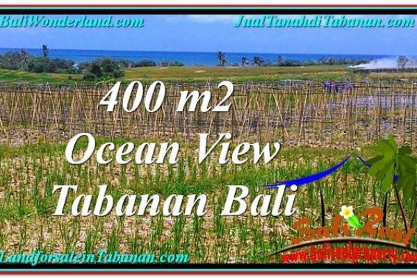 Affordable Tabanan Kerambitan BALI LAND FOR SALE TJTB292