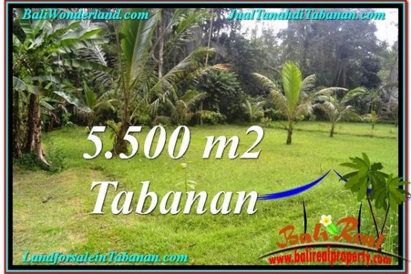Affordable PROPERTY LAND FOR SALE IN TABANAN TJTB295