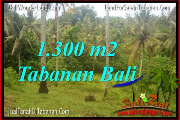 Beautiful PROPERTY LAND IN Tabanan Selemadeg FOR SALE TJTB314