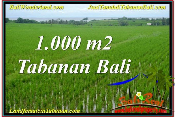 Exotic LAND FOR SALE IN Tabanan Kerambitan TJTB307