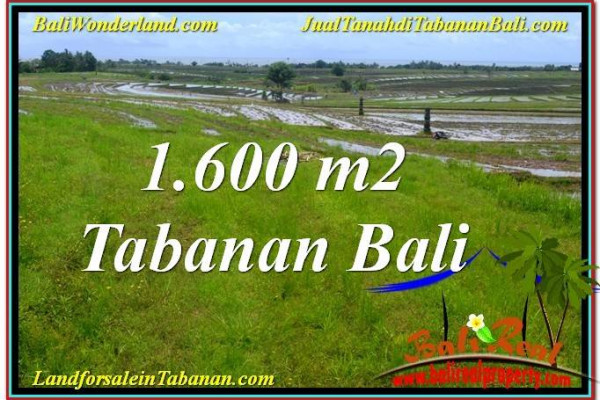 Exotic PROPERTY TABANAN BALI LAND FOR SALE TJTB310