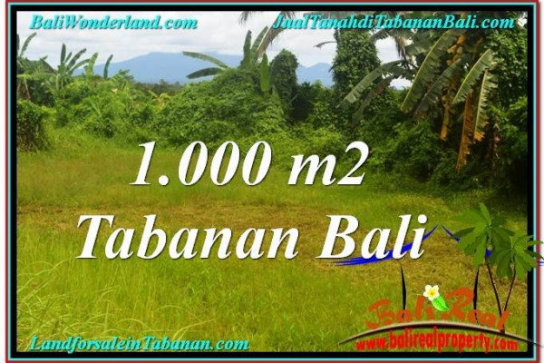 Exotic LAND SALE IN Tabanan Selemadeg BALI TJTB311