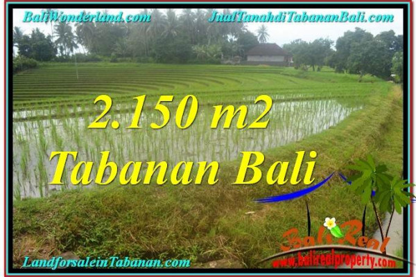 Magnificent LAND IN Tabanan Selemadeg FOR SALE TJTB312