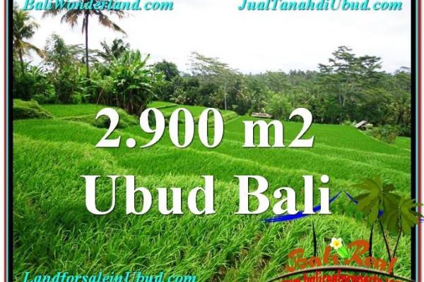 Beautiful UBUD BALI 2,900 m2 LAND FOR SALE TJUB564