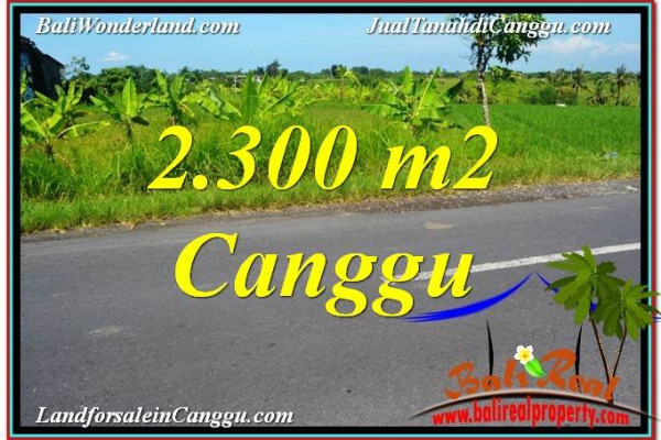 Affordable PROPERTY LAND SALE IN CANGGU BALI TJCG209