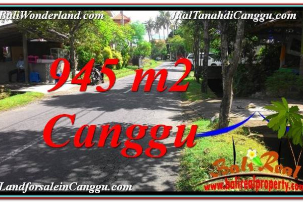 FOR SALE Affordable PROPERTY 945 m2 LAND IN Canggu Pererenan TJCG210