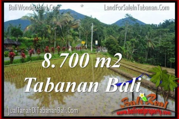 Magnificent PROPERTY TABANAN LAND FOR SALE TJTB316