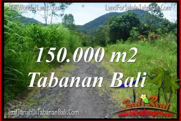 Beautiful PROPERTY 150,000 m2 LAND FOR SALE IN Tabanan Penebel BALI TJTB318