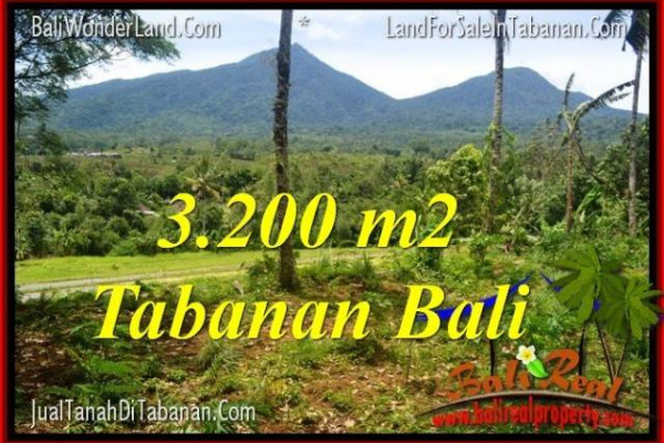 Affordable PROPERTY 3,200 m2 LAND FOR SALE IN TABANAN BALI TJTB319