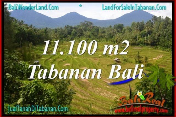 Exotic LAND SALE IN TABANAN TJTB320