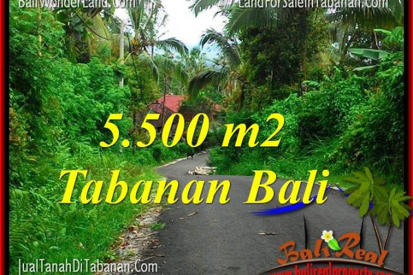 Magnificent PROPERTY TABANAN BALI LAND FOR SALE TJTB323