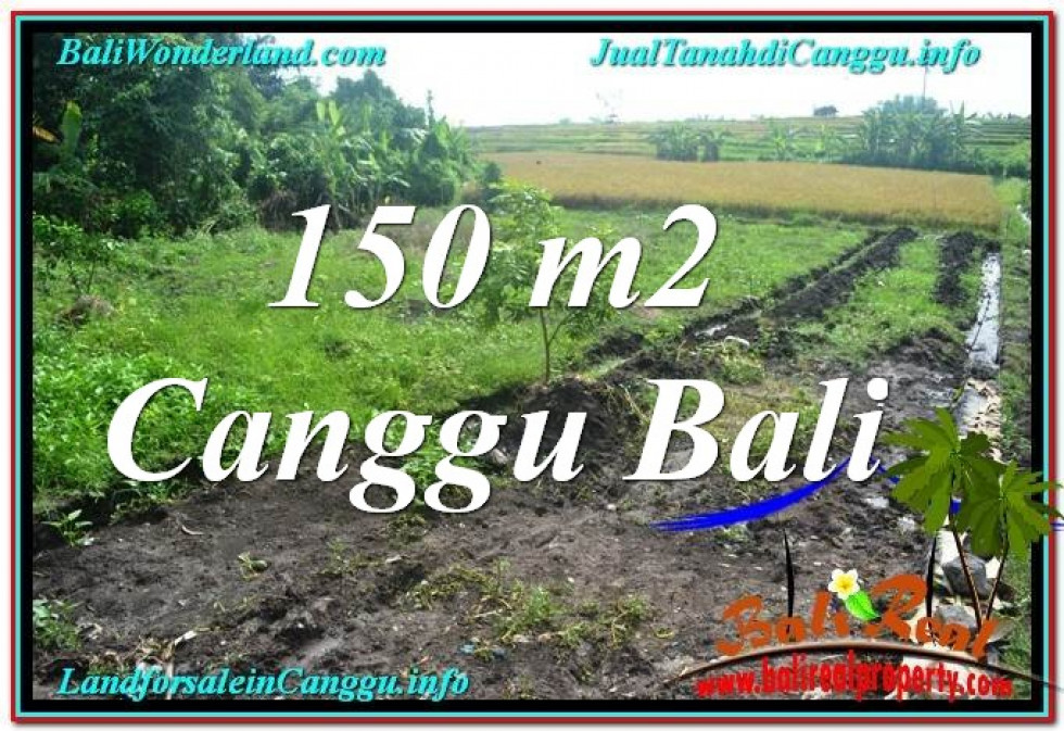 Exotic PROPERTY LAND IN Canggu Pererenan BALI FOR SALE TJCG213
