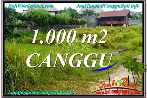 Exotic PROPERTY Canggu Pererenan BALI 1,000 m2 LAND FOR SALE TJCG214